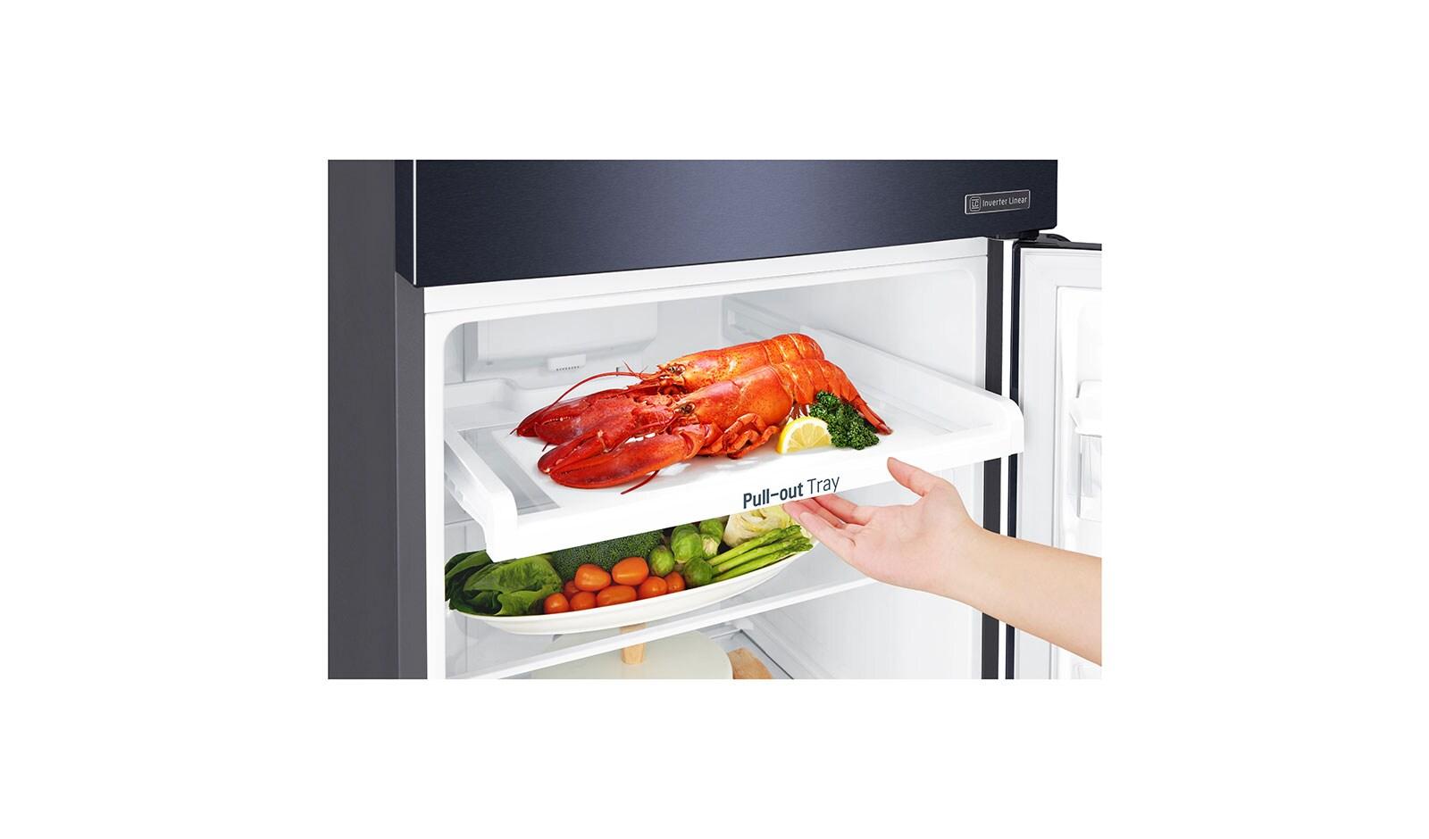 Stainless Steel Vcm Top Freezer Lg Refrigerator Schematics