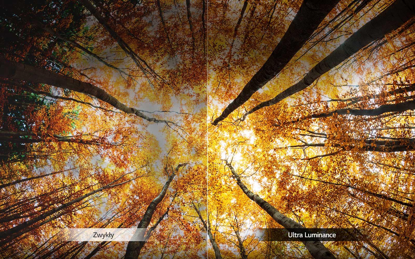 05_UK65_A_Ultra_Luminance_desktop
