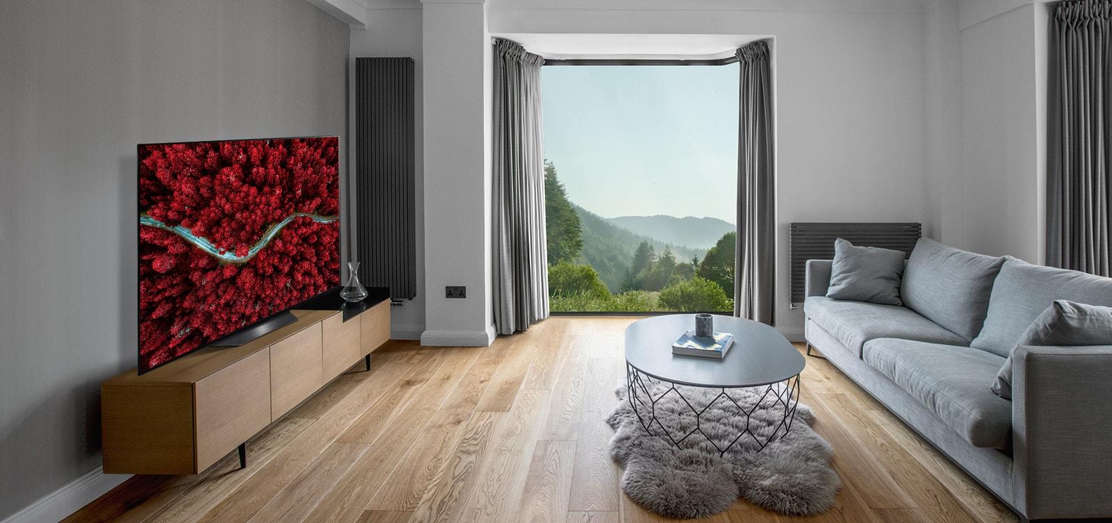 Salon z sofą i telewizorem, na ekranie którego wyświetlony jest obraz przyrody z lotu ptaka