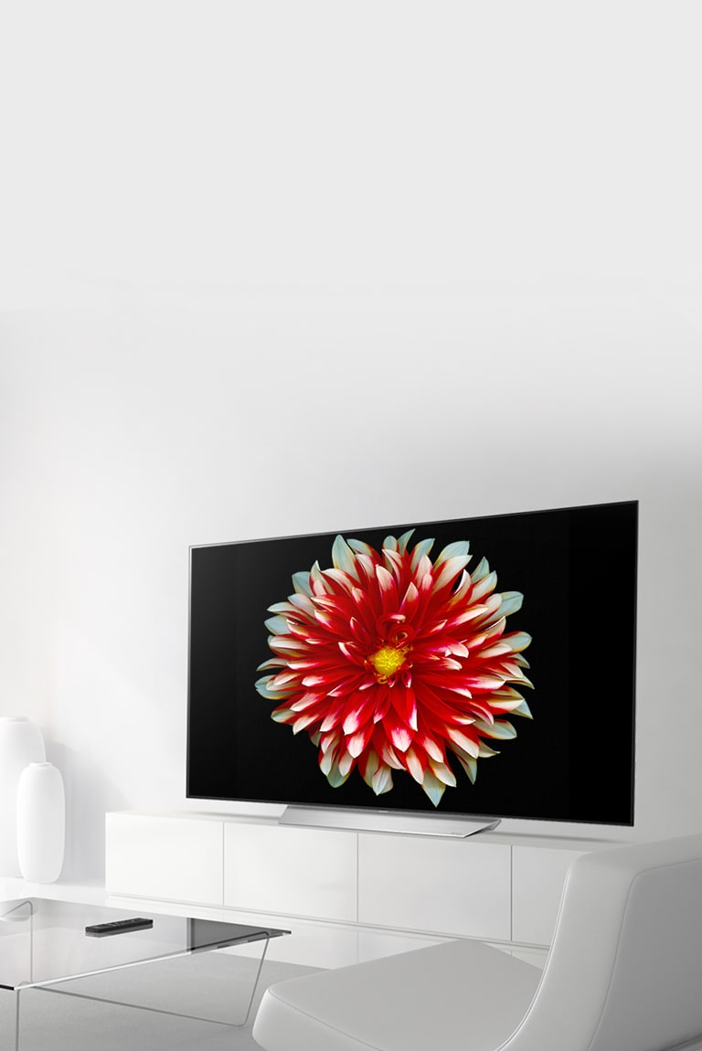 Painel Para Tv No Ático By Jack Móbiles: LG OLED55B7V : OLED TV