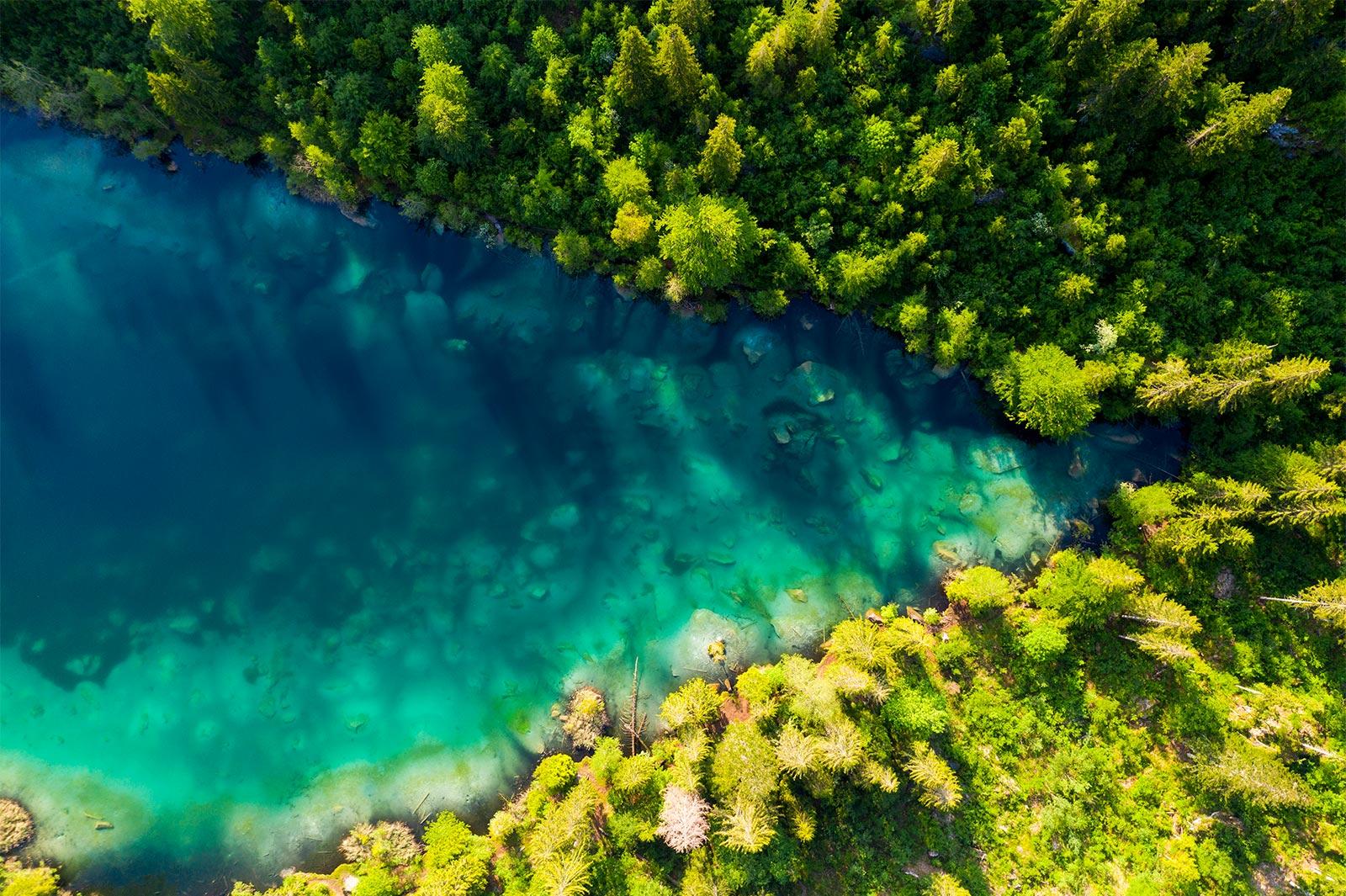 На изображении показан вид сверху на густой лес с протекающей через него рекой. Изображение, демонстрирующее FHD.