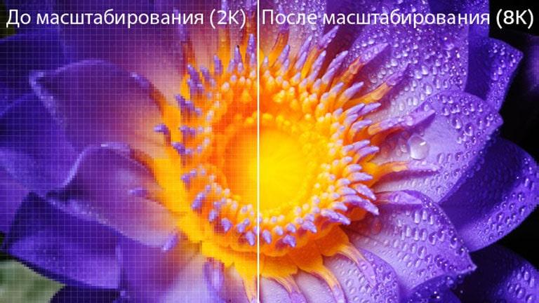 Изображение цветка в исходном разрешении 2K слева и изображение того же изображения, масштабированного до 8K, справа.