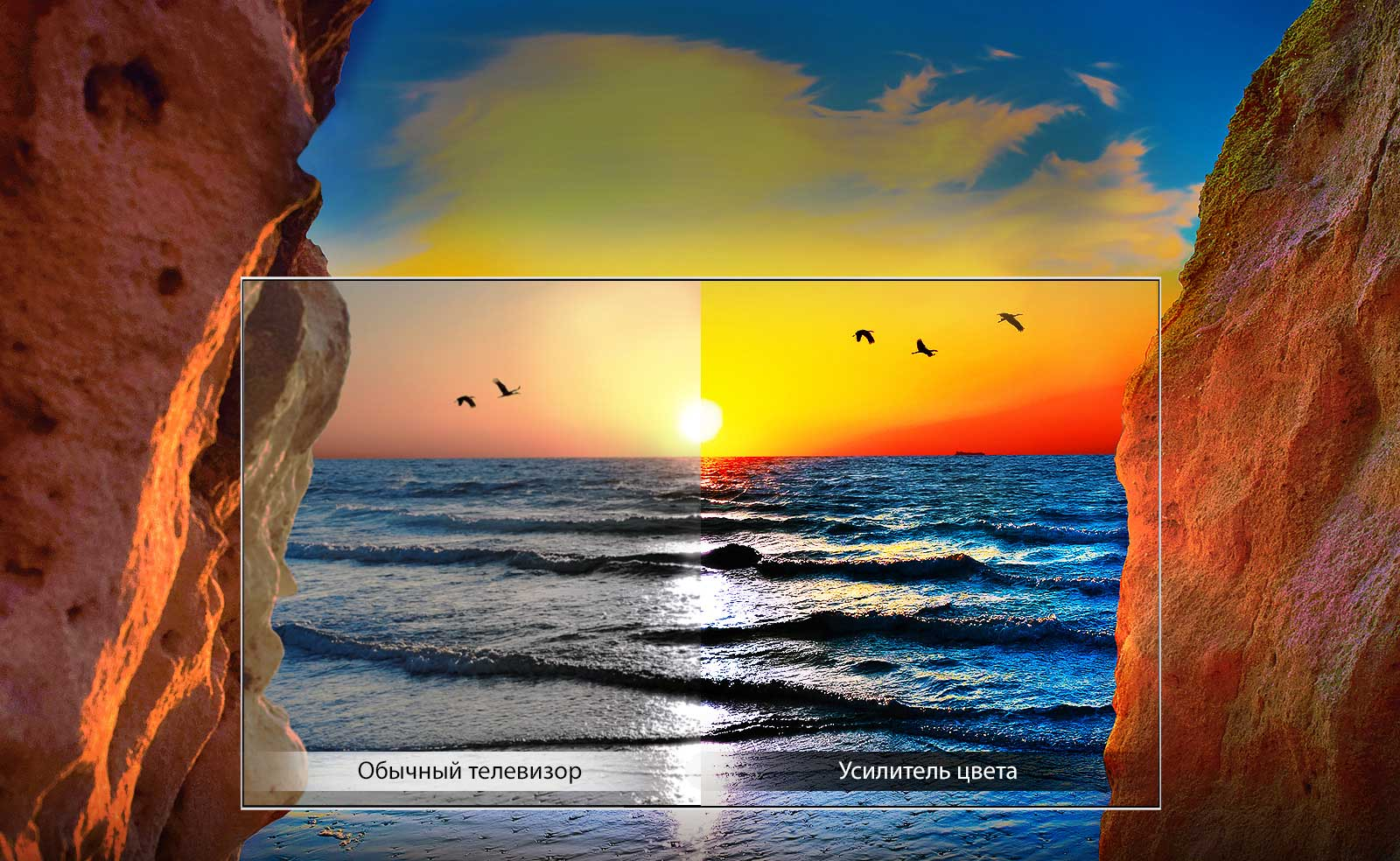TV-UHD-UM75-A-07-Dynamic-Color-Desktop