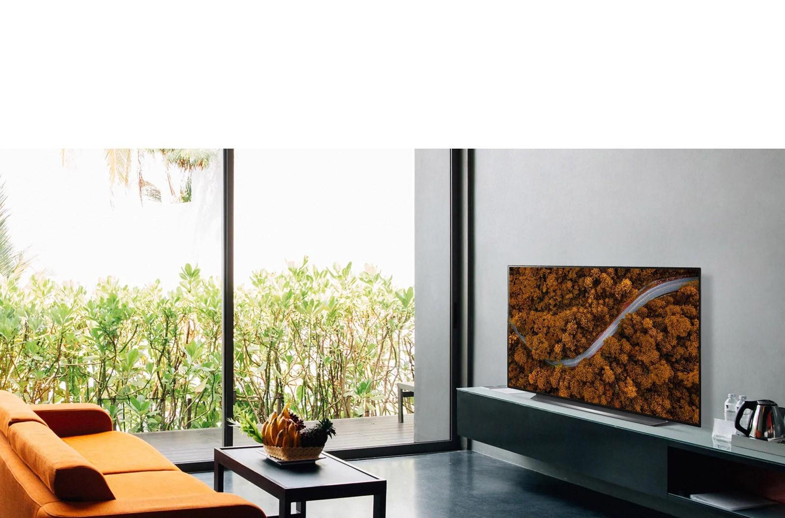 Гостиная с телевизором, показывающим картину с цветком