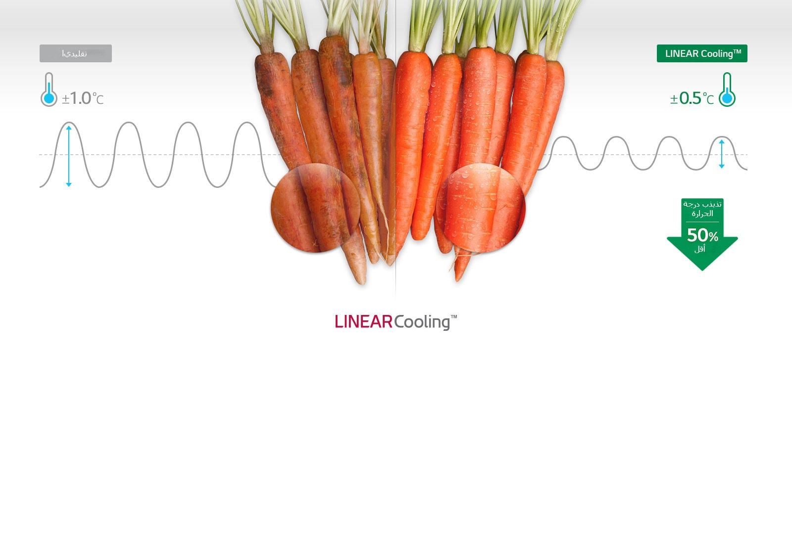 LT22CBBSLN_Linear_Cooling_07122018_D