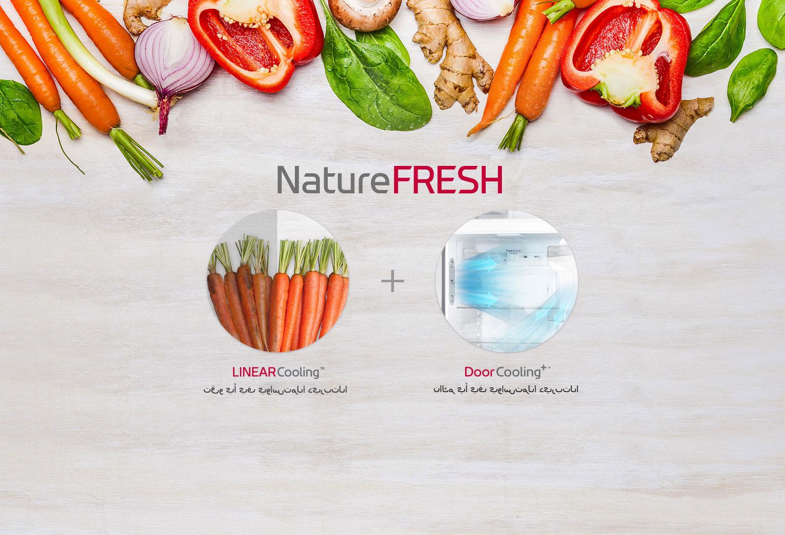Nature_Fresh_D