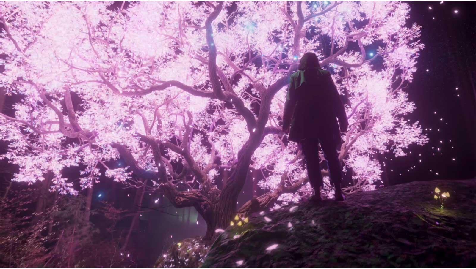 شاشة تلفزيون يظهر عليها أشعة ملونة تشع من شجرة متلألئة (تشغيل الفيديو)