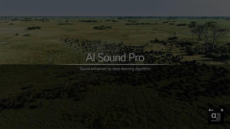 """يدور هذا فيديو حول وظيفة الصوت الاحترافية بتقنية الذكاء الاصطناعي. انقر فوق زر """"مشاهدة الفيديو كاملاً"""" لتشغيل الفيديو."""