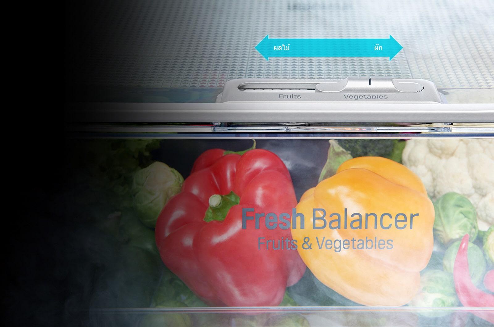 FRESHBalancer™ ฟีเจอร์ตู้เย็น LG