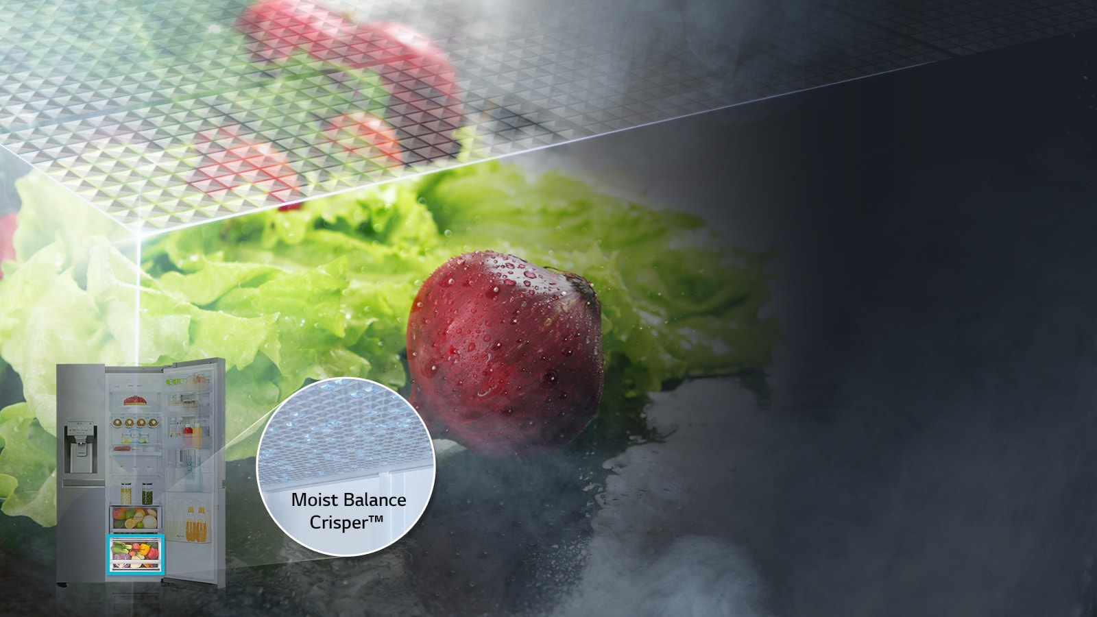 Moist Balance Crisper™ ตู้เย็น
