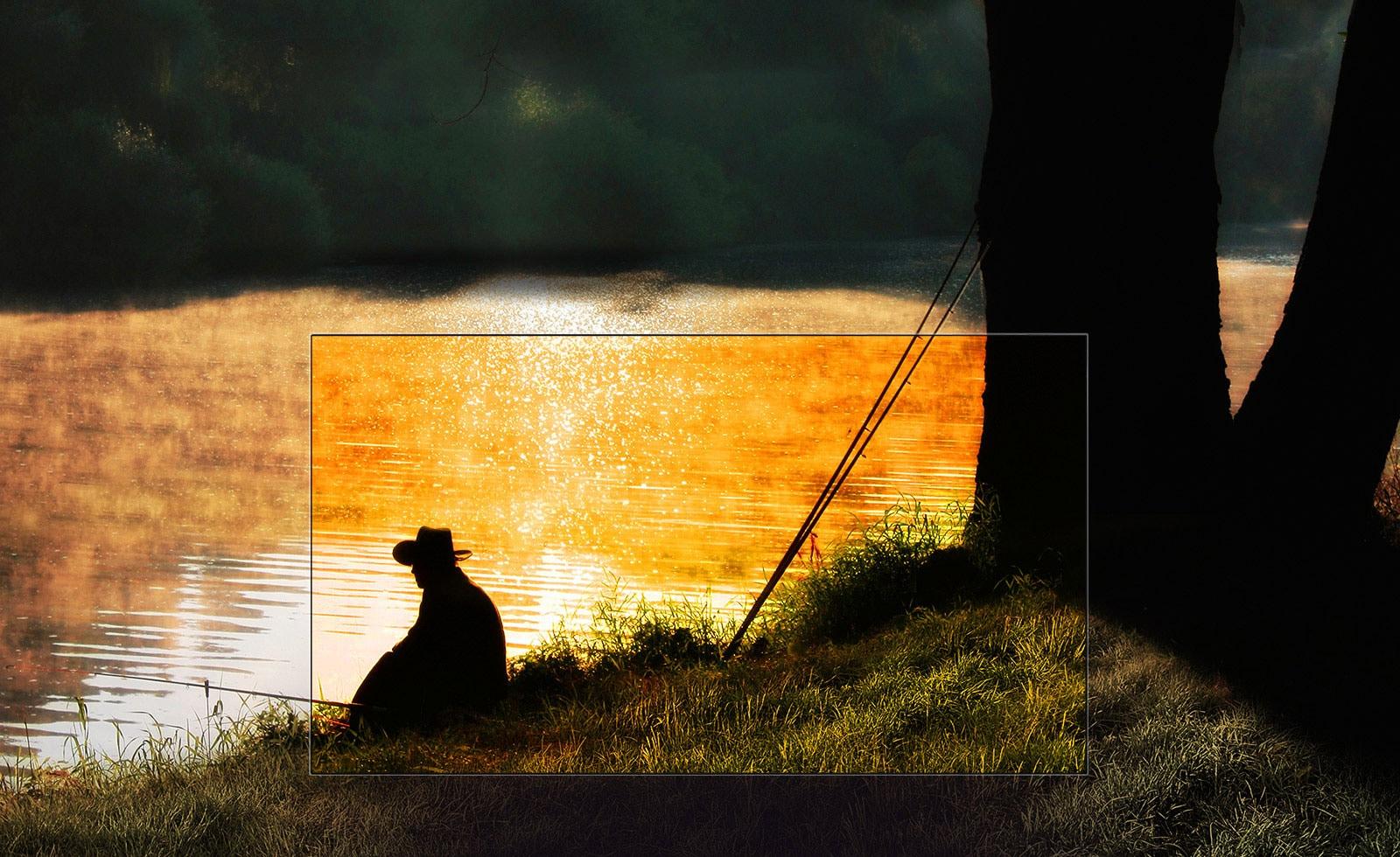 LG OLED TV เปลี่ยนห้องคุณเป็นโรงภาพยนตร์
