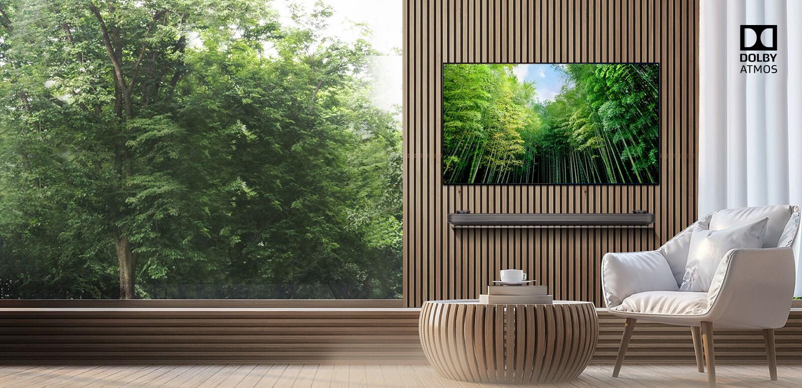 OLED TV ระบบเสียงรอบทิศทาง