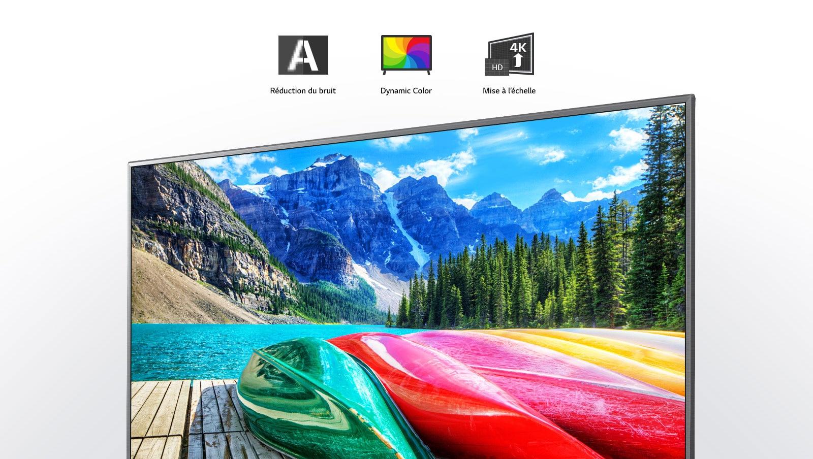 Icones des fonctions Réduction du bruit, Dynamic color et Mise à l'échelle, et écran de télévision présentant une vue panoramique des montagnes, de la forêt et d'un lac.