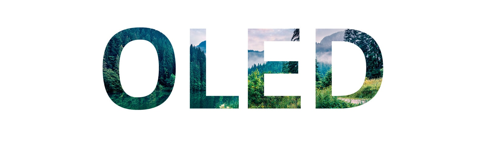 填滿「OLED」的大自然圖像從右側滑入(播放影片)