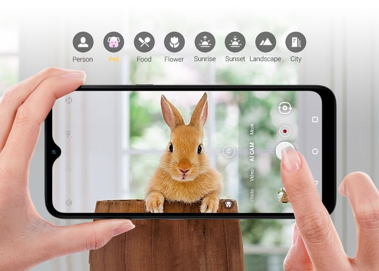 Closeup of someone holding a smartphone shooting a rabbit