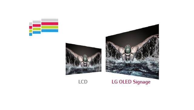 LG 55EJ5C-B 55 Wallpaper OLED Digital Signage Display - LG | Enter Computers
