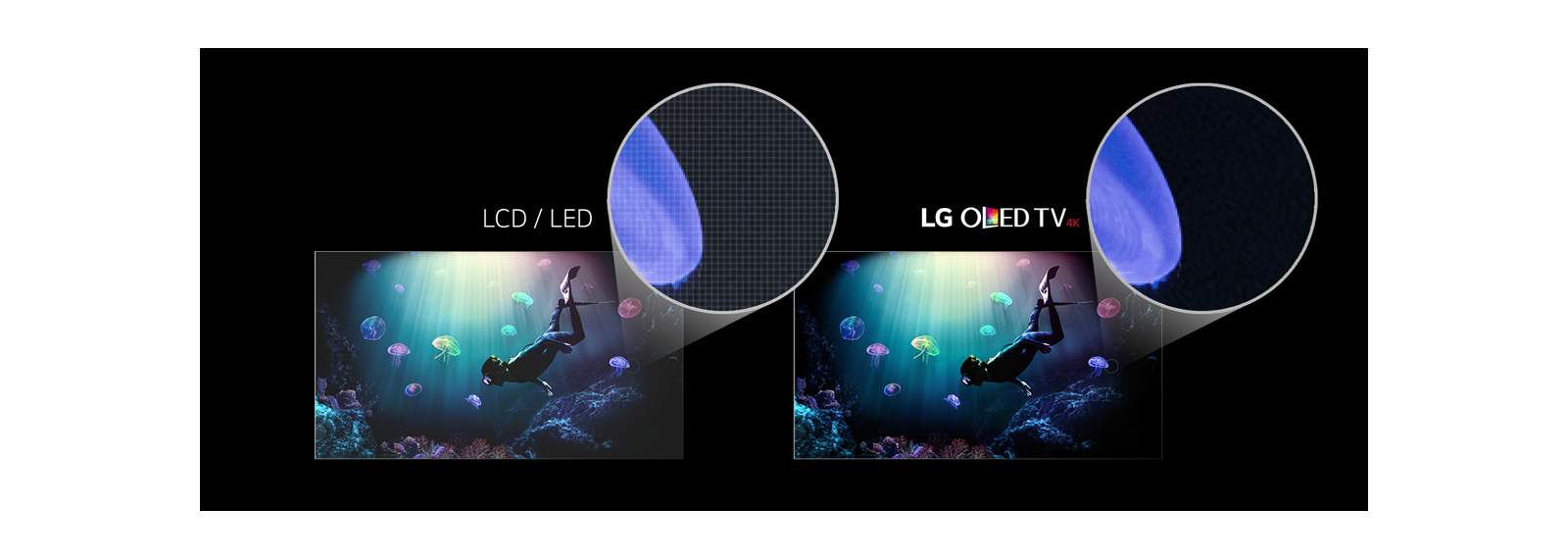 oled vs led tv displays lg usa