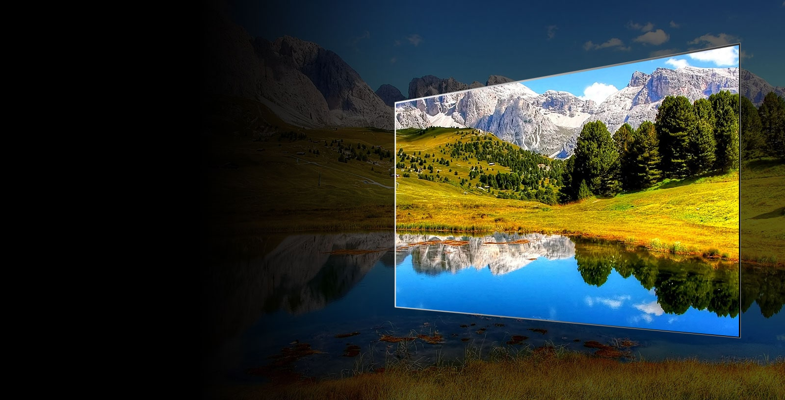OLED TV Reliability