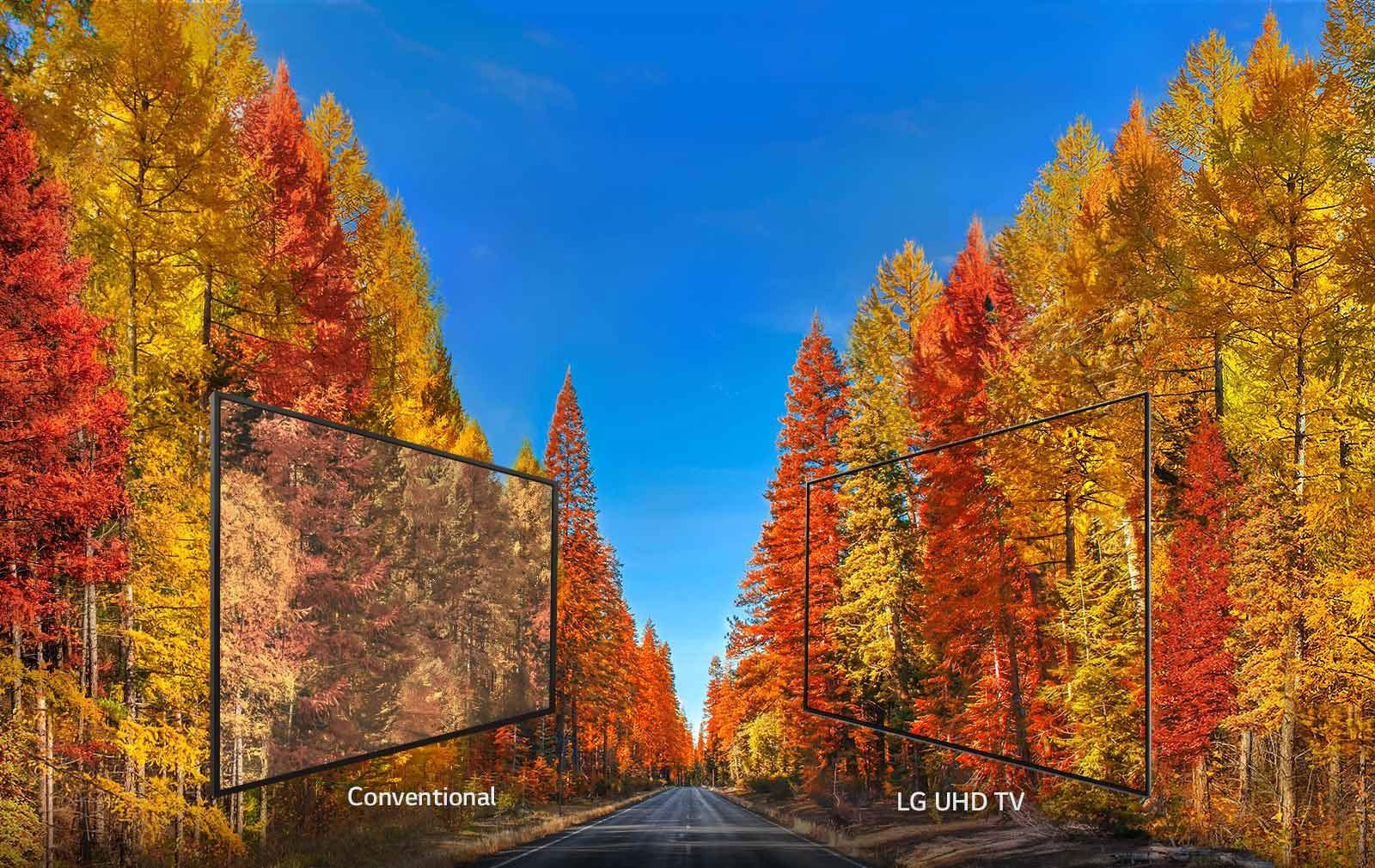 Lg 65uk6500aua 65 Inch Class 4k Hdr Smart Led Uhd Tv W Ai Thinq Telephone Wiring Colour Codes Uk 86uk70pub Wide Viewing Angle 29092018 D