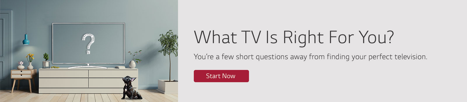 What TV Is Right for You?