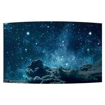 "55"" Landscape FHD Flexible Curved Open Frame OLED with Perfect Black & built-in SoC1"