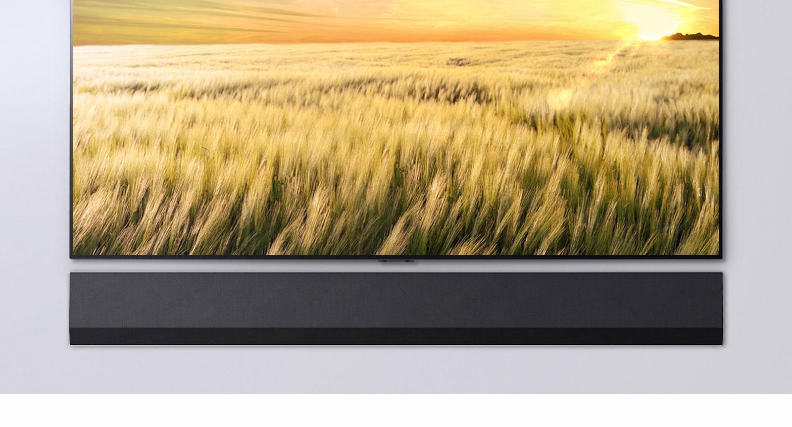 Pogled na televizijo in Soundbar s sprednje strani.  Televizor prikazuje polje trsa ob sončnem zahodu.