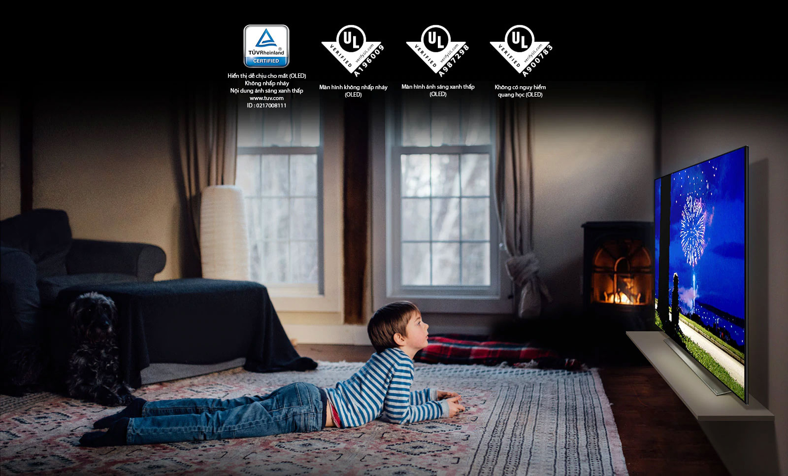 """Đây là thẻ mô tả """"""""Hiển thị dễ chịu cho mắt"""""""". Đây là cảnh một cậu bé xem TV ở tư thế nằm sấp. Bốn logo được hiển thị để chứng nhận """"""""Hiển thị dễ chịu cho mắt""""""""."""