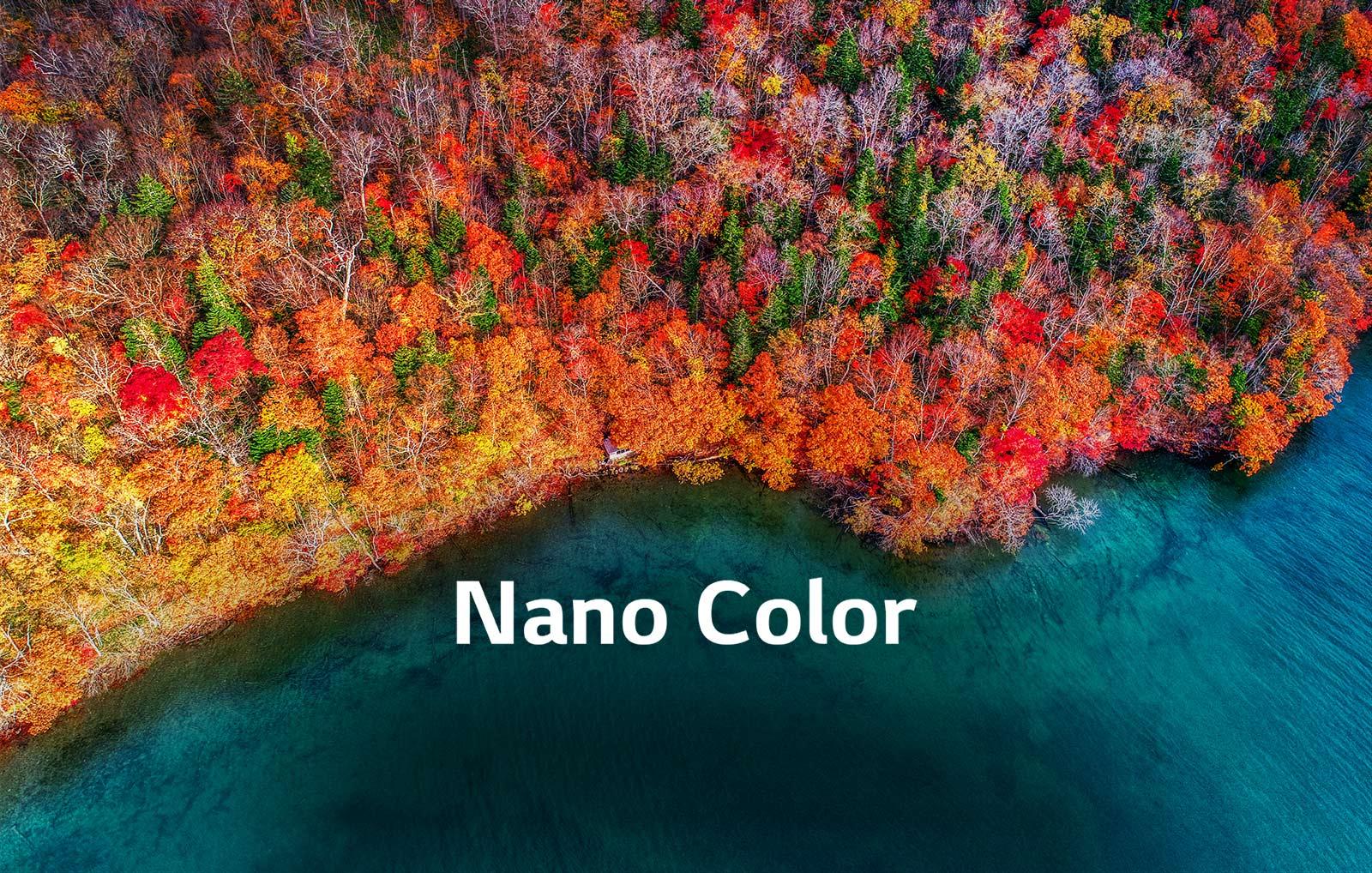 TV-NanoCell-65-55-49-SM90-02-Nano-Color-Desktop