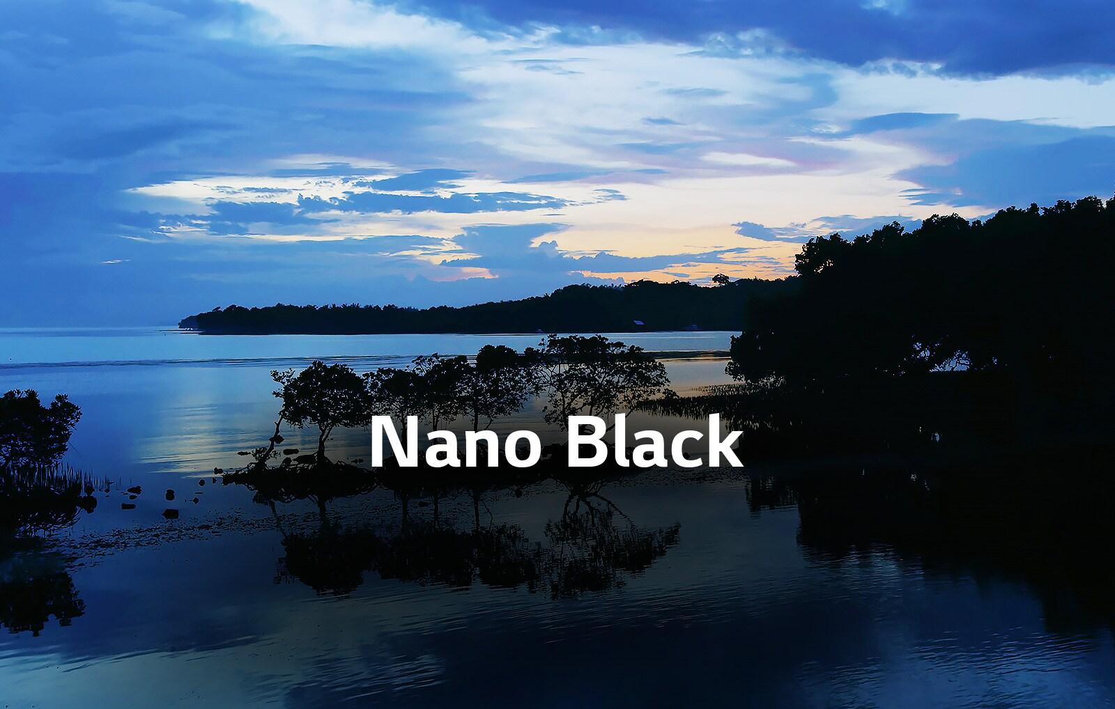 TV-NanoCell-65-55-49-SM90-04-Nano-Black-Desktop