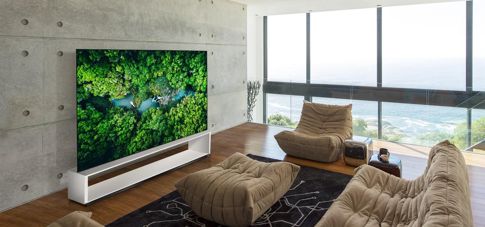 Phòng khách sang trọng với ghế sofa và TV hiển thị khung cảnh thiên nhiên trên không
