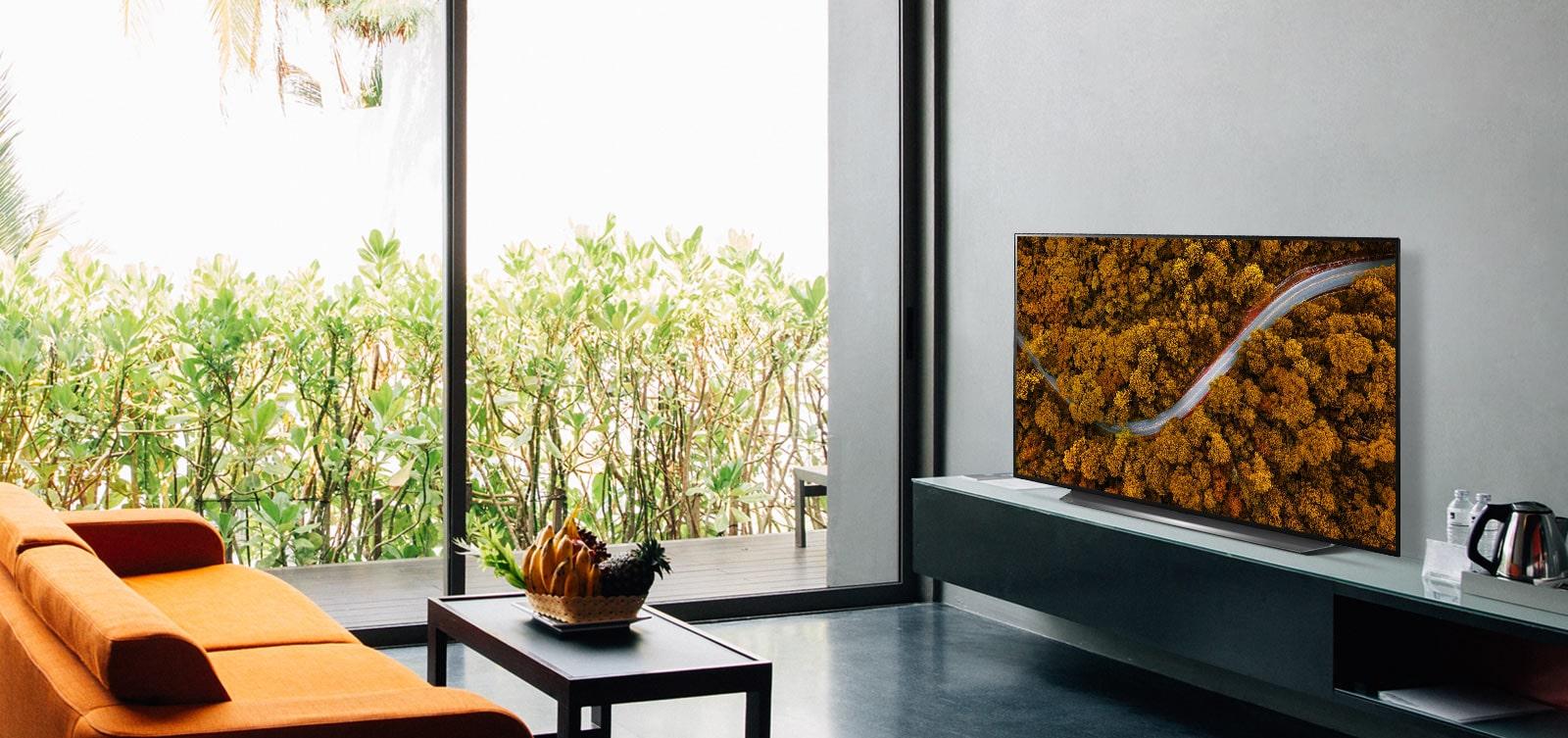 Phòng khách với ghế sofa và TV cho thấy khung cảnh thiên nhiên trên không