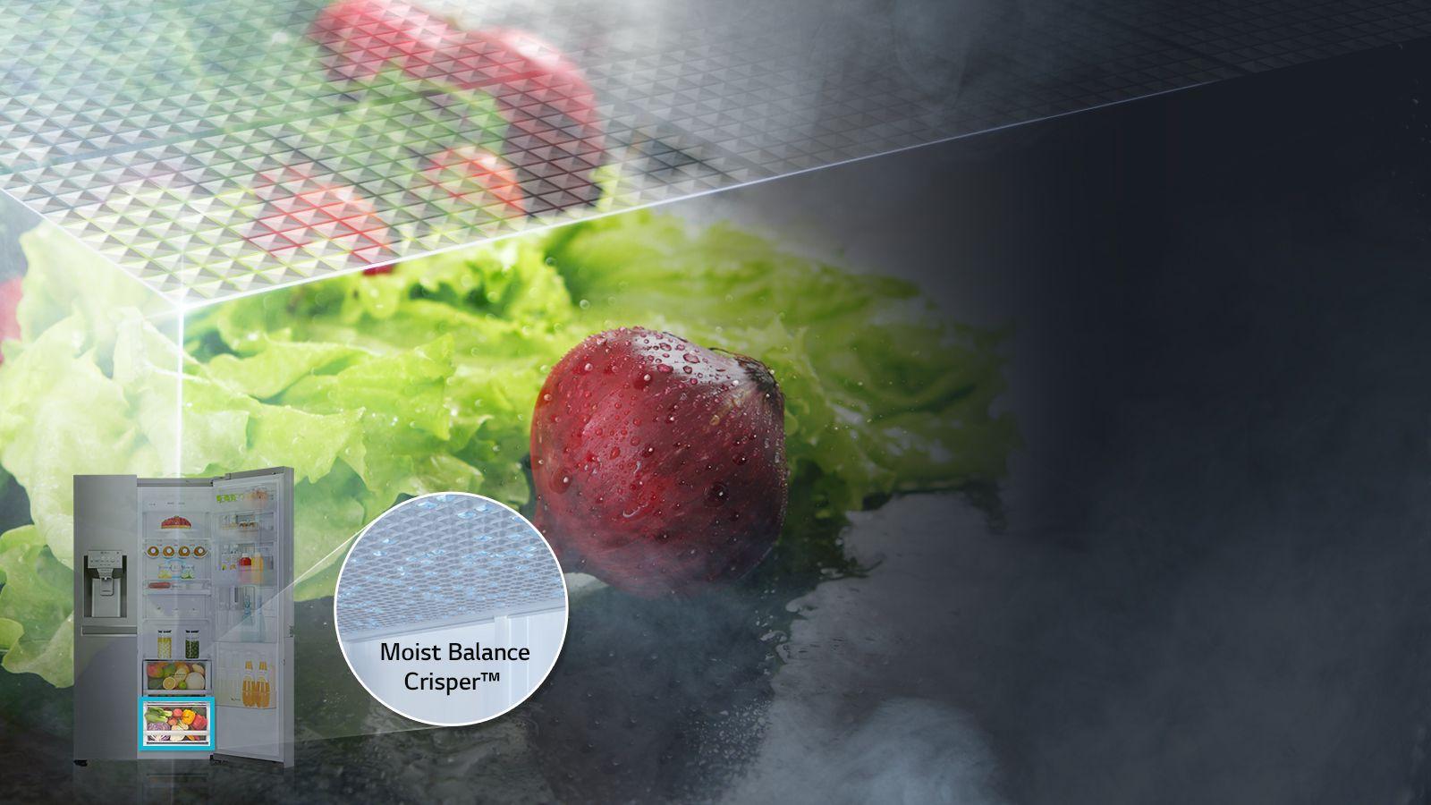 LG Fridges - Moist Balance Crisper™