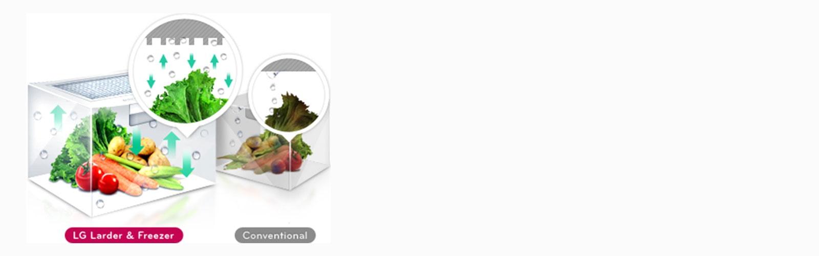 lg-refrigerator-lansen-feature_Moist_Balance_Crisper_D