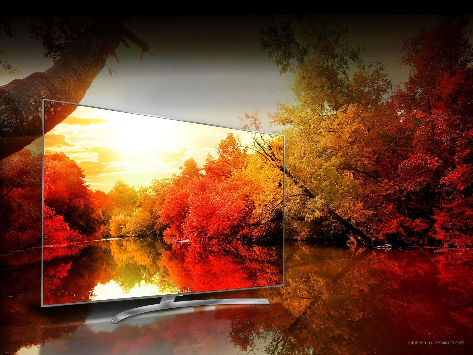 LG TV's - Colors to impress through billion rich colors