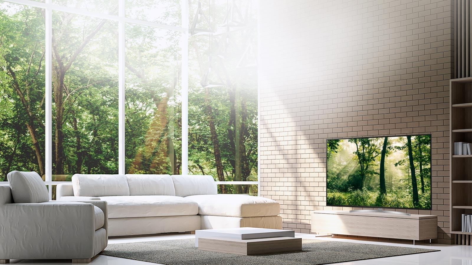 LG TV's - Boundless Cinema Screen