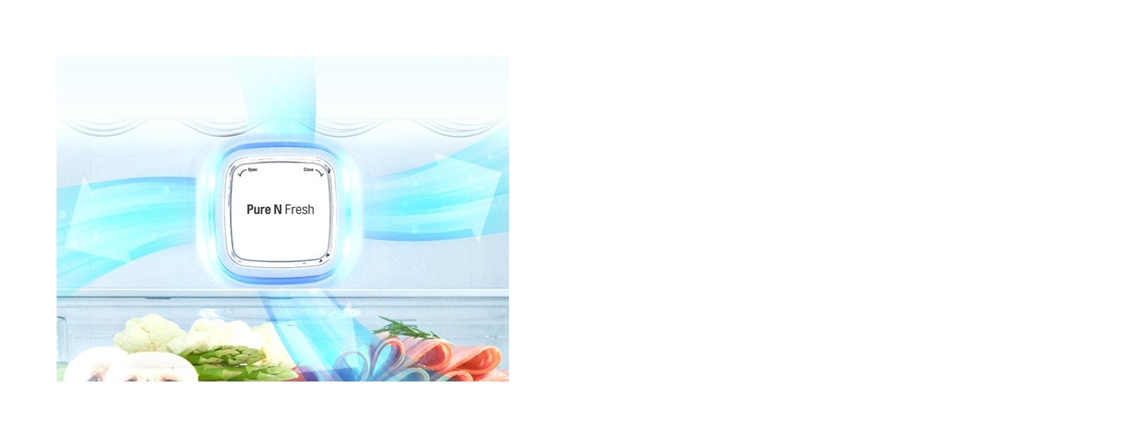 LG GC-X247CQBV Reduce Fridge Odours with Pure N Fresh